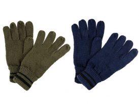 Pánske zimná rukavice Regatta Balton Glove II RMG028