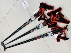 AKCIA ZIMA 2021/22: Palice na bežky Rex Vega Carbon Composite